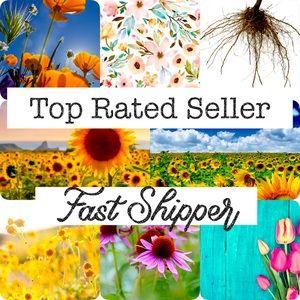 🌟🌟🌟🌟🌟 Star Ratings, Fast Shipper 📦